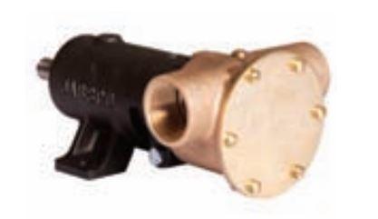 """Jabsco Heavy Duty Flexible Impeller Composite Pump 1"""" BSP 9710-200"""